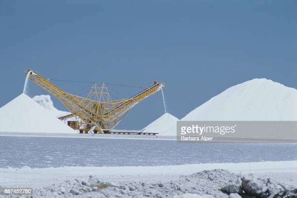 Salt mining in Bonaire Netherlands Antilles March 2000