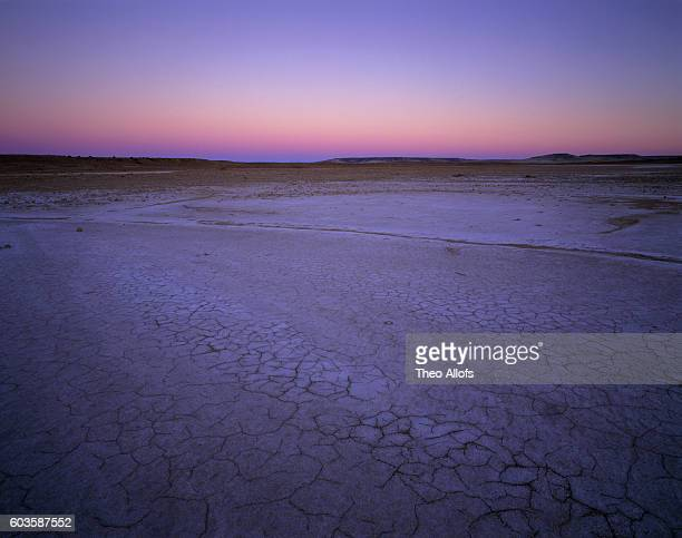 Salt pan with drought patterns at dawn, Witjira National Park, South Australia, Australia
