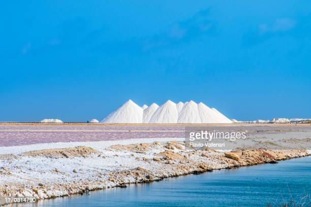 ボネールの塩鍋 - ボネール島 ストックフォトと画像
