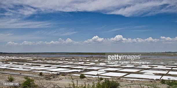 Salt pans on East Coast Road