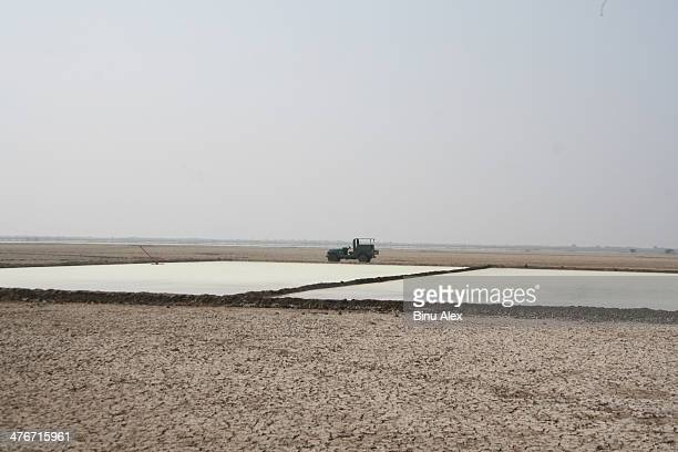 CONTENT] Salt Pans spring up in Little Rann of Kutch just as migratory birds starts flocking to this region