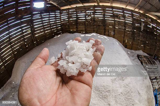 salt - hispaniola stock photos and pictures