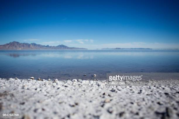 salt - barr stock pictures, royalty-free photos & images