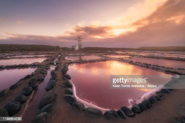 salt ponds at sunset, cruce de arinaga. canary islands, spain - ソルトポンド ストックフォトと画像