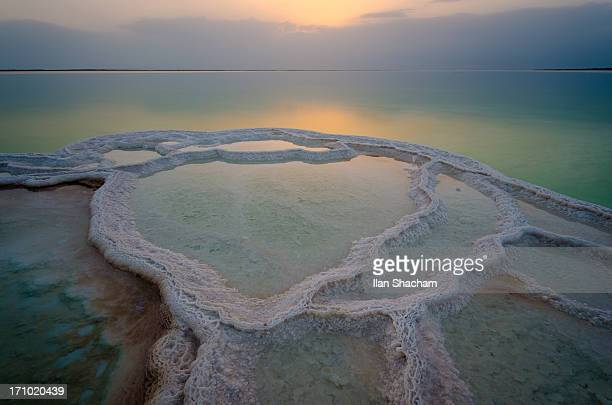 salt pool sunrise - dead sea stock pictures, royalty-free photos & images