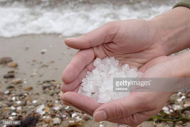 Salt & Sea