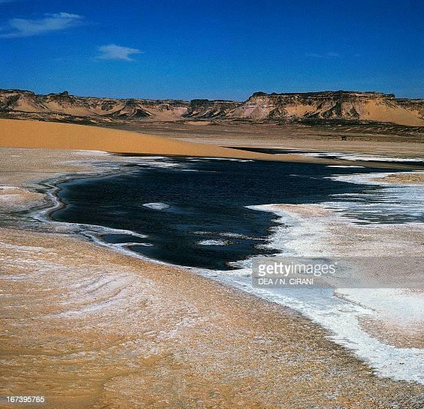 Salt spring oasis of Bilma in the background the Bilma cliffs Niger