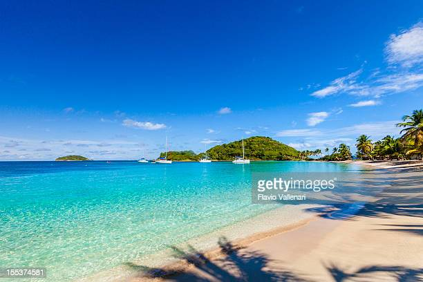 salt whistle bay, mayreau - saint vincent and the grenadines stock pictures, royalty-free photos & images