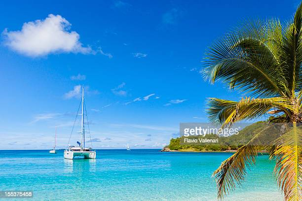 salt whistle bay, mayreau - catamaran stock photos and pictures