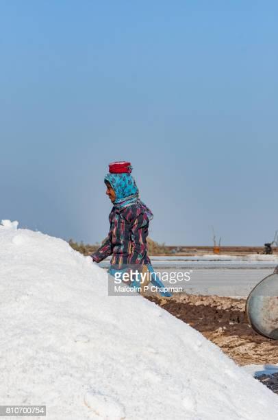 Salt worker, young adult woman, on the Little Rann of Kutch, salt pans near Dhrangaghra, Gujarat, India