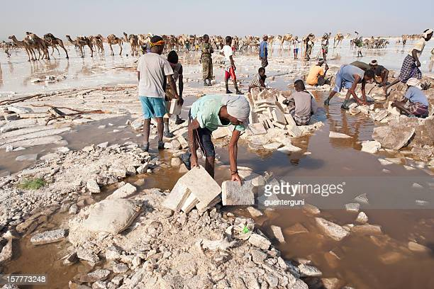 Salt workers in the Danakil Desert, Ethiopia