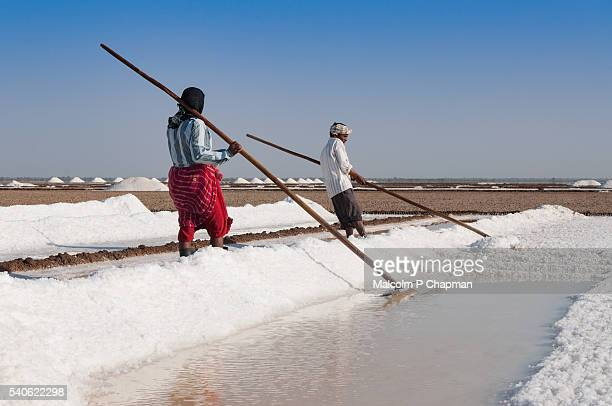Salt workers in the Little Rann of Kutch, Gujarat, India