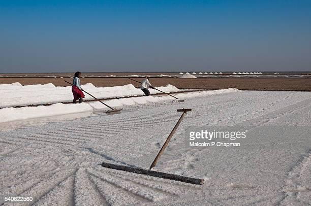 Salt workers in the Little Rann of Kutch, Gujarat, India