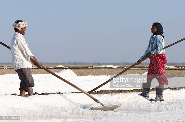 Salt workers in the Little Rann of Kutch, Gujarat, India. The area is famous for its unique salt-pans where salt is harvested by local tribes. Taken...