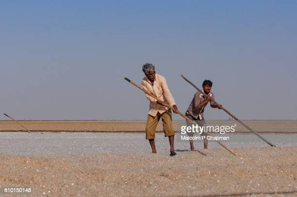 Salt workers on the Little Rann of Kutch, salt pans near Dhrangaghra, Gujarat, India