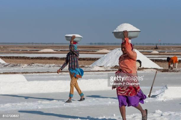 Salt workers on the Little Rann of Kutch, salt pans near Dhrangaghra, Gujarat,India