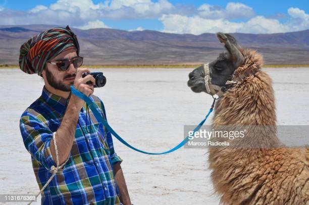 salta province, puna desert, argentina - radicella photos et images de collection