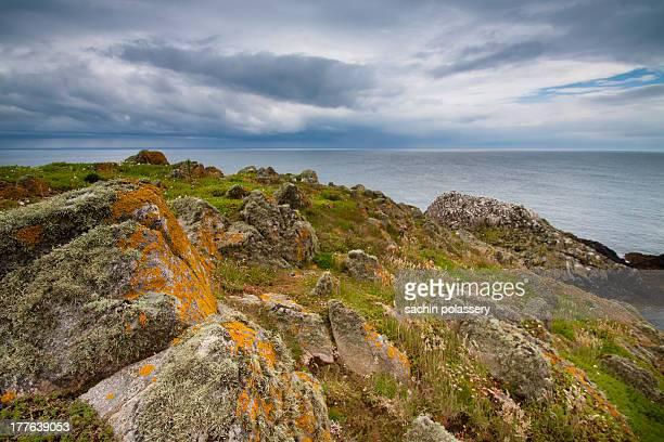 saltee islands - ウェックスフォード州 ストックフォトと画像