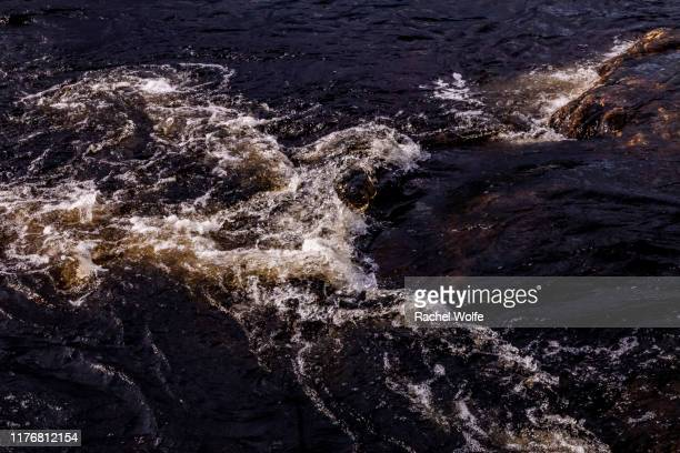 saltstraumen - rachel wolfe stock pictures, royalty-free photos & images