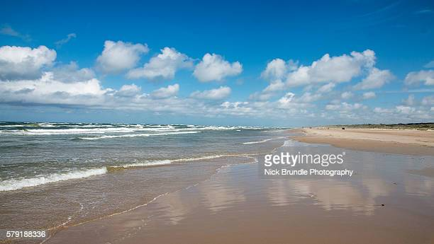 Saltum Beach, Denmark