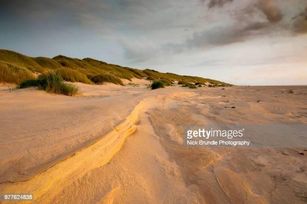 saltum beach, denmark - aalborg stock pictures, royalty-free photos & images