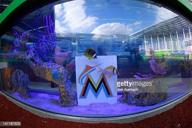 Saltwater fish swim past a Marlin logo in a fish tank behind home plat prior to the game between the Miami Hurricanes and the Miami Marlins at...