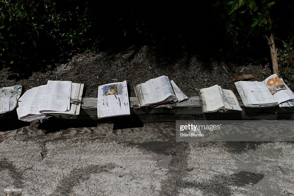 Saltwater-soaked books are left to dry in the sun in the parking lot of the Cedar Cove resort after being damaged by the winds and storm surge associated with Hurricane Hermine which made landfall overnight in the area on September 2, 2016 in Cedar Key, Florida. Hermine made landfall as a Category 1 hurricane but has weakened back to a tropical storm.