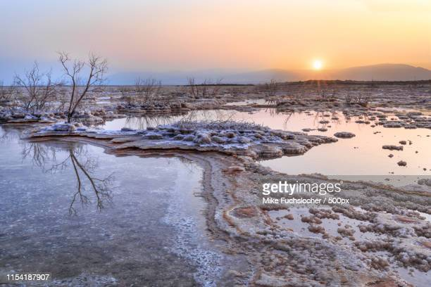 salty morning at the dead sea - dead sea stock pictures, royalty-free photos & images