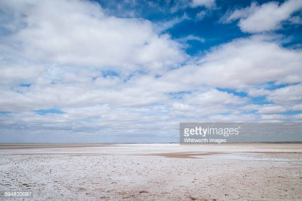 Salty shore of lake Eyre South, outback Australia