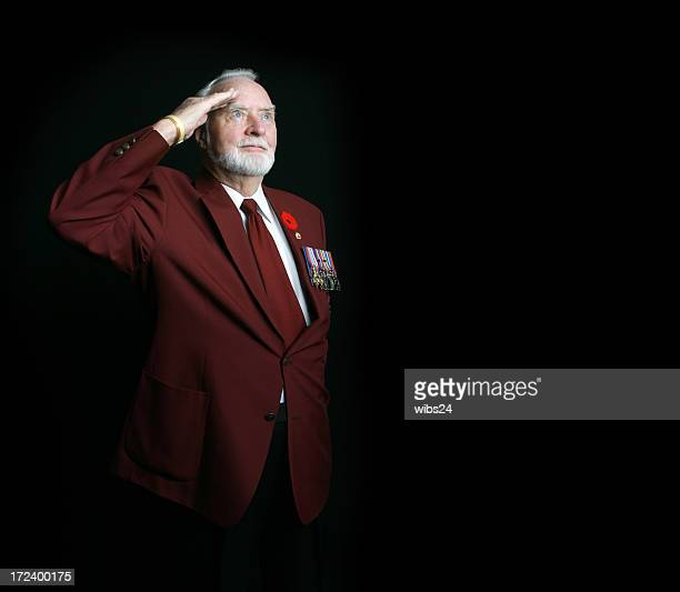 saluting wwii veteran - remembrance day stock pictures, royalty-free photos & images