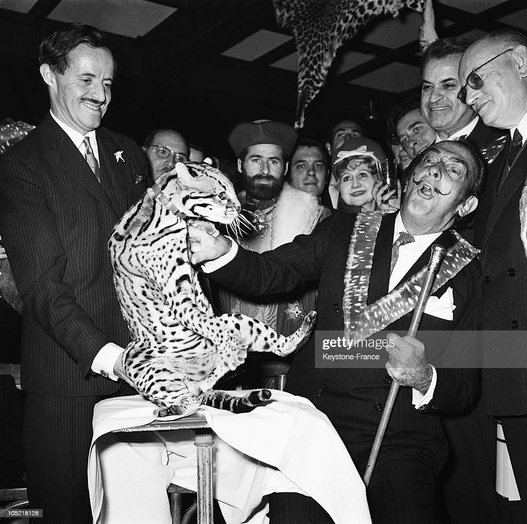 Salvador Dali And A Ocelot In Paris In 1967 : ニュース写真