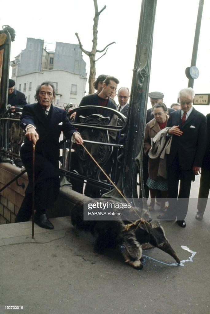 From Barcelona To Paris. Paris - Juillet 1969 --- Féru de 'happenings', Salvador DALI est descendu dans le métro avec un tamanoir, animal symbole du surréalisme. En sortant de la station Bastille, celui-ci a trouvé sur le sol du lait dont il est très friand. Mais le lait est aussi un symbole dalinien : l'angélisme. Légende photo donnée par l'artiste lui-même : 'Salvador Dali sortant du sous-sol du subconscient tenant en laisse un tamanoir romantique, l'animal qu'André Breton avait choisi comme ex-libris.'.