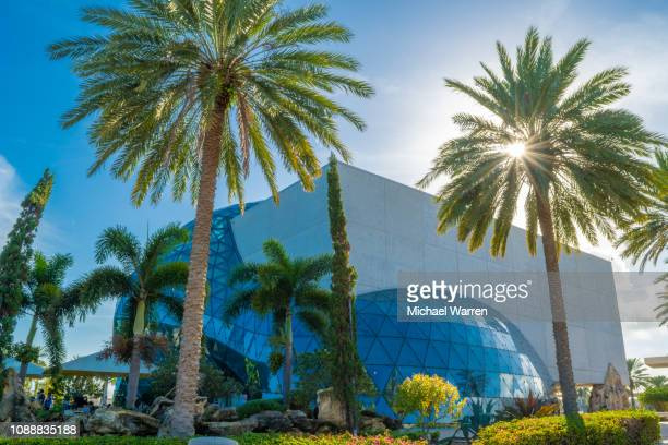 salvador dali museum - st. petersburg florida stock pictures, royalty-free photos & images