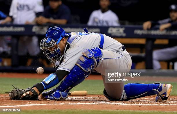 Salvador Perez of the Kansas City Royals fields a throw on a walk off force attempt throwing error by Ryan O'Hearn on a hit by Kevin Kiermaier of the...
