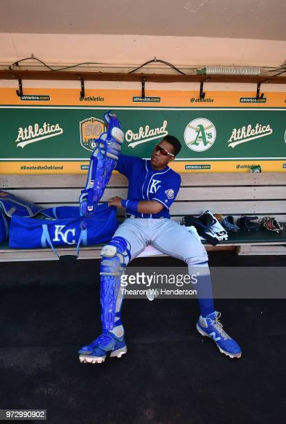 Salvador Perez of the Kansas City Royals works with his catchers gear in the dugout prior to the start of his game against the Oakland Athletics at...