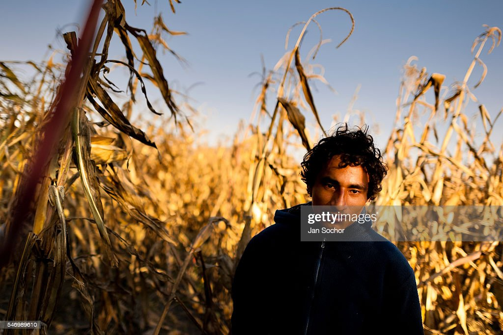 A Salvadoran immigrant, hiding in the corn field, waits near the railroad track to climb up the cargo train passing through the train station in Huehuetoca, Mexico, 7 November 2014. Between 2010 and 2015, the US and Mexico have apprehended almost 1 million illegal immigrants from El Salvador, Honduras, and Guatemala. While the economic reasons remain the most frequent motivation for people from Central America to illegally immigrate to the US, thousands of Salvadorans, Guatemalans, and Hondurans, many of them minors, seek asylum in the US due to the thriving crime and gang-related violence in their region (known as the Northern Triangle).
