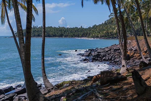 Cayenne, French Guiana