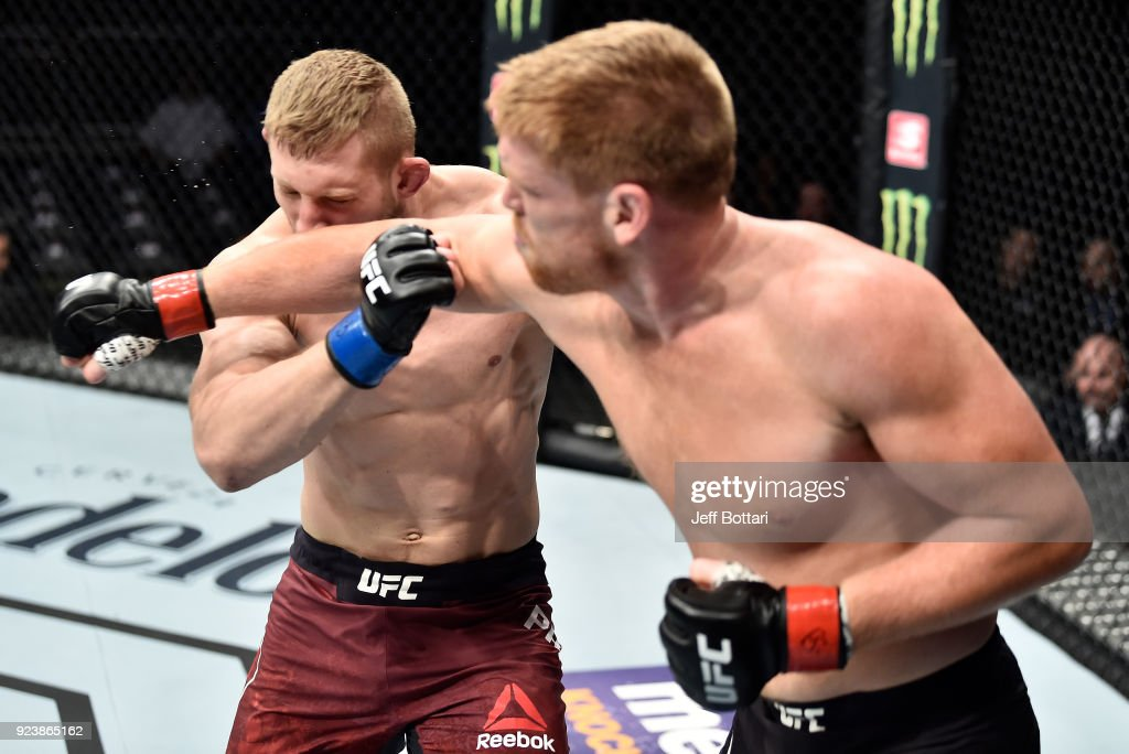 UFC Fight Night: Alvey v Prachnio : News Photo