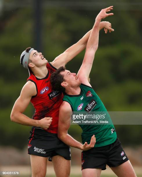 Sam Draper of the Bombers and Matthew Leuenberger of the Bombers compete in a ruck contest during the Essendon Bombers training session at The Hangar...
