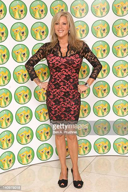 Sam Fox attends the Burgess Wetnose Animal Rescue Awards 2012 at Jumeirah Carlton Tower on March 9 2012 in London United Kingdom