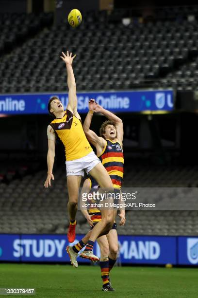 Sam Frost of the Hawks in action Players contest for the ball during the round 20 AFL match between Adelaide Crows and Hawthorn Hawks at Marvel...