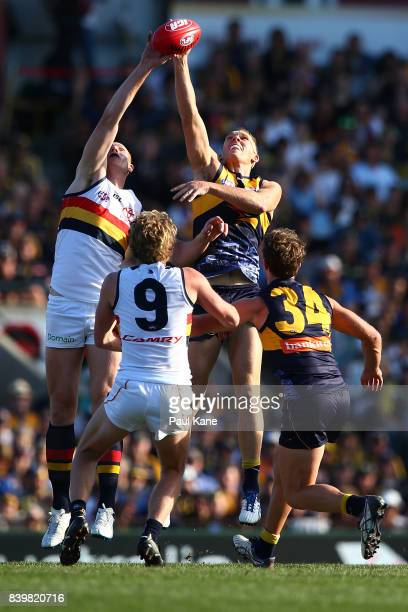 Sam Jacobs of the Crows and Drew Petrie of the Eagles contest the ruck during the round 23 AFL match between the West Coast Eagles and the Adelaide...