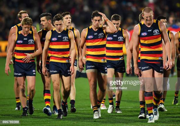 Sam Jacobs of the Crows walks from the field during the round 14 AFL match between the Adelaide Crows and the Hawthorn Hawks at Adelaide Oval on June...