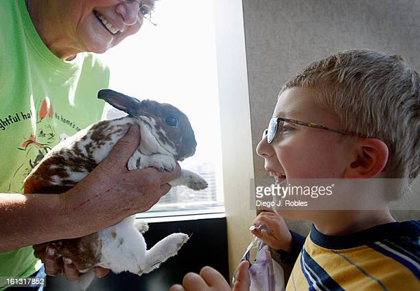 Sam Morgan of Boulder prepares to take Finnegan a young Mini Rex breed from Nancy LaRoche of Colorado House Rabbit Society on Friday morning April 2...