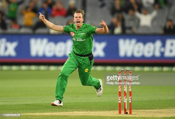 Sam Rainbird of Stars celebrates after the dismissal of Josh Philippe of Sixes during the Big Bash League match between the Melbourne Stars and the...