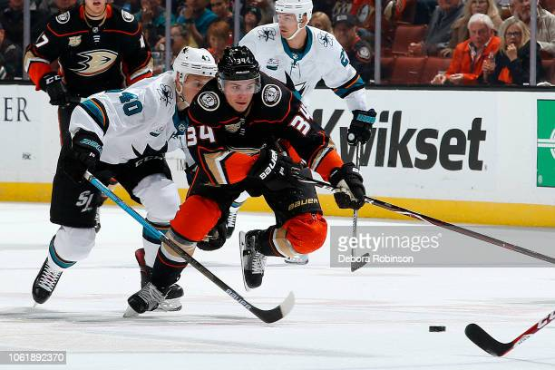 Sam Steel of the Anaheim Ducks skates with the puck with pressure from Antti Suomela of the San Jose Sharks during the game on October 28 2018 at...