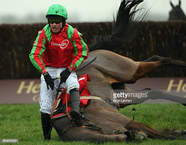 Sam Thomas riding Apocal falls at the last fence during the Totesport Novices' Handicap Steeple Chase at Newbury Races on November 29 2008 in Newbury...