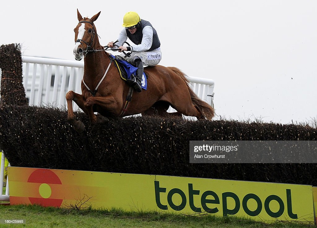 Sam Twiston-Davies riding Rhum clear the last to win The Connolly's Red Mills Handicap Steeple Chase at Wincanton racecourse on January 31, 2013 in Wincanton, England.