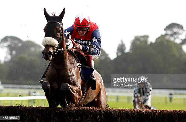 Sam TwistonDavies riding Rothman clear the last to win The Invest With Confidence At selftradecouk Beginners' Steeple Chase at Fontwell racecourse on...