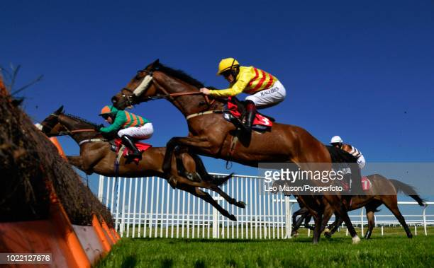 Sam TwistonDavies riding Rothman in The Matchbook Novices Hurdle Race at Kempton Park on May 6 2018 in Sunbury England